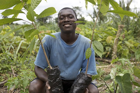 Young African man with plants