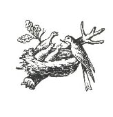 First Nestlé bird's nest logo