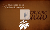 Nestlé Cocoa Plan video