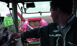 <em>Maggi Mousline</em> and sustainable potato farming