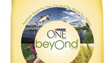 One beyond logo
