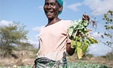 a woman farmer on her agricultural land
