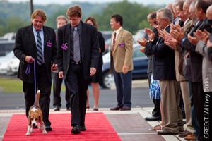 Dogs and owners walking done red carpet at the opening event