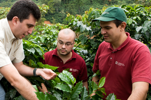 Ecolaboration team in Guatemala