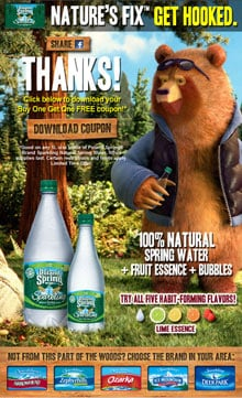 Nature's Fix bear poster