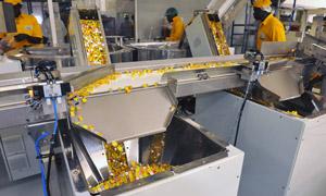 Nestlés Flowergate Factory in Nigeria