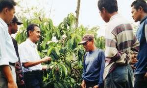 Coffee farmers in Indonesia