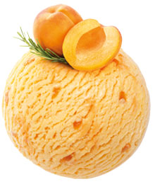 Apricot and Rosemary ice cream