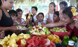 Nestlé Healthy Kids Global Programme in Mexico