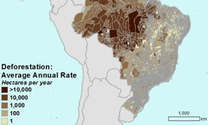 Conservation International map of Brazil