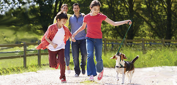 family walking the dog