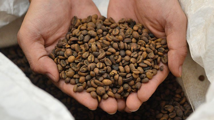 Nestlé opens first decaffeination plant in Asia
