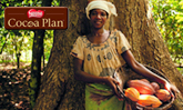 Women in the cocoa supply chain