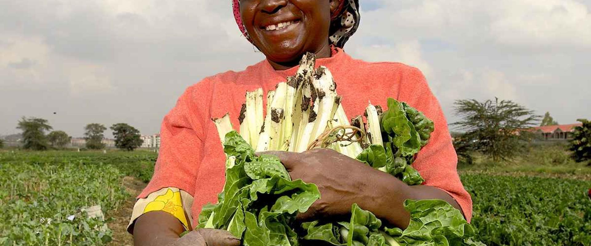 farmer woman meeting